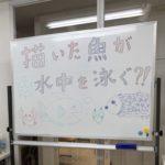 理科実験教室を開催しました!